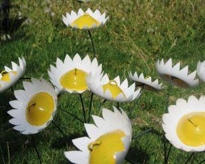 flowers_types_Image10