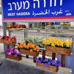 israel-train-placemaking-600-006
