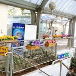 israel-train-placemaking-600-007